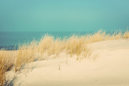 nostalgy: Calm sunny beach with dunes and grass. Baltic sea in the background. Vintage Stock Photo