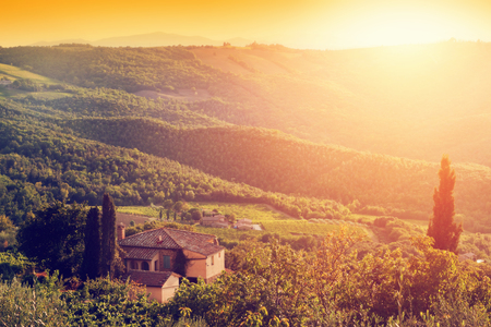 Vineyard and farm house, villa in Tuscany, Italy. Cypress trees. Sunset warm light 新聞圖片