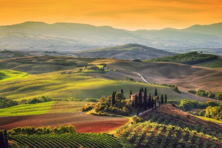 Tuscany landscape at sunrise. Typical for the region tuscan farm house, hills, vineyard. Italy 에디토리얼