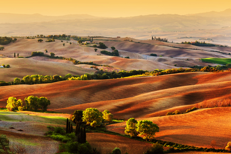 italy landscape: Tuscany countryside landscape at sunrise, Italy. Hilly fields, wavy terrain