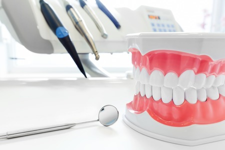 tool: Clean teeth denture, dental jaw model, mirror and dentistry instruments in dentists office.