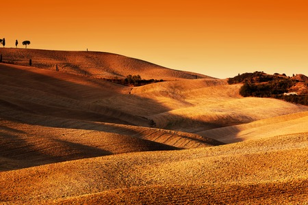 san quirico d'orcia: Tuscany landscape at sunset. Picturesque hills with lights and shadows. Typical for the region wavy hills, undulating terrain. Italy