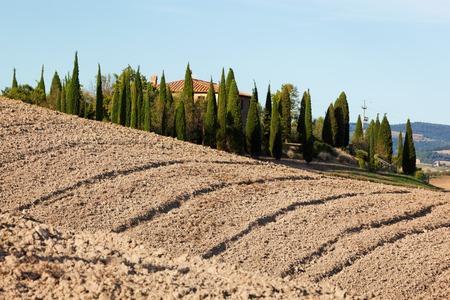 san quirico d'orcia: Tuscany landscape. Field, farm house among cypress trees. Italy. Blue sunny sky Stock Photo