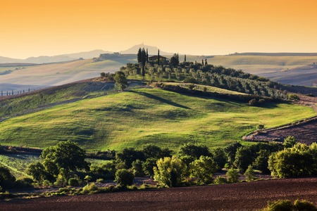 olive farm: Tuscany landscape at sunrise. Typical for the region tuscan farm house, green hills, olive trees. Italy