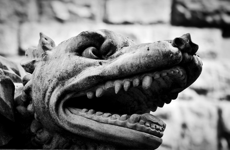black wolf: Ancient style sculpture of angry wolf in Florence, Italy. Black and white, head close-up