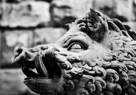 animal in the wild: Ancient style sculpture of Wild boar in Florence, Italy. Black and white, head close-up Stock Photo