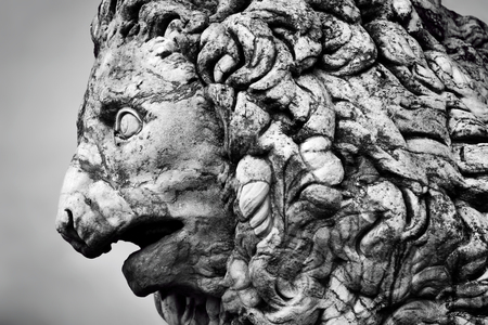 medici: Ancient style sculpture of The Medici lion in Loggia dei Lanzi in Florence, Italy. Black and white