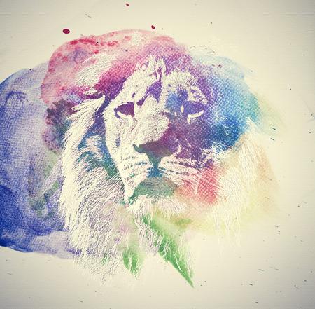 fortaleza: Pintura de la acuarela de león. El arte abstracto, colorido. Único