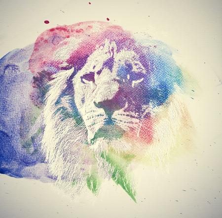 dangerous lion: Watercolor painting of lion. Abstract, colorful art. Unique
