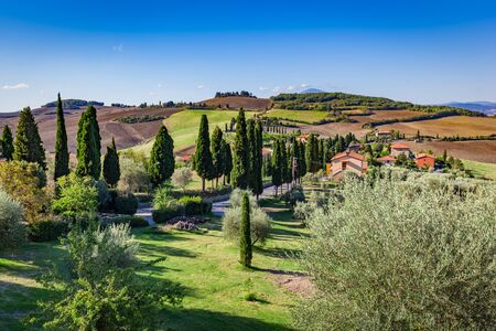 monticchiello: Tuscany countryside landscape with cypress trees, farms and green fields, Italy. View from Monticchiello