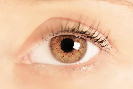 yeux bruns d'une jeune femme. Fermer. Focus sur l'iris et la pupille.