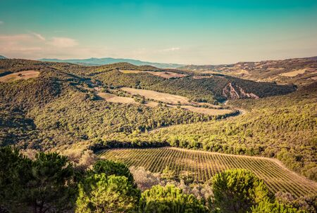 san quirico d'orcia: Tuscany landscape with green meadows, vineyards, forests on picturesque hills. Italy. Aerial view