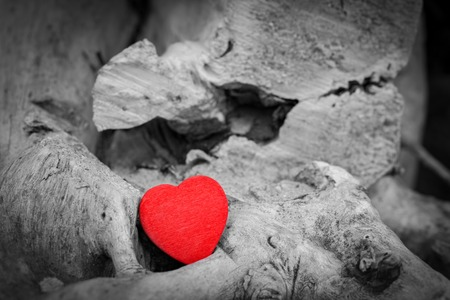 black tree: Red heart in a tree trunk and branches. Romantic symbol of love, Valentines Day. Black and white against red.