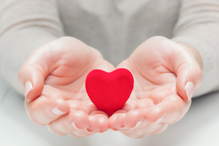 love life: Small red heart in womans hands in a gesture of giving, protecting. Health, life, love symbol.