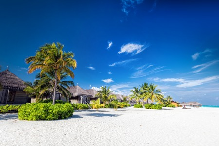 maldivian: Beach with coconut palms and villas on a small island resort in Maldives, Indian Ocean. Holidays destination Stock Photo