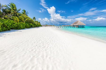 Wide sandy beach on a tropical island in Maldives. Coconut palms and water lodge on Indian Ocean.