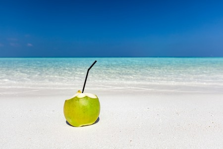 peace pipe: Fresh green coconut with pipe inside, ready to drink. Tropical beach in Maldives, Indian Ocean Stock Photo