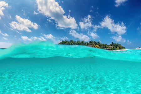 maldivian: Tropical island on Indian Ocean, Maldives. Half underwater shot, clear turquoise water