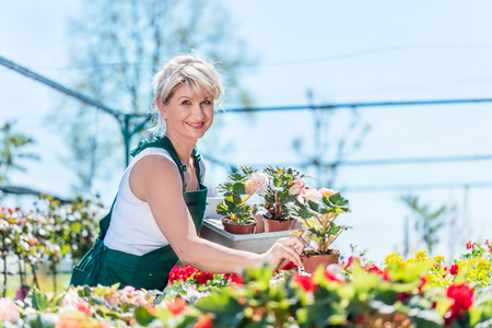 Attractive gardener selecting flowers in a gardening center. Work concept.