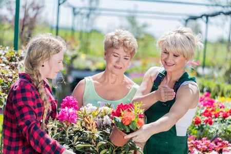 Grandmother and granddaughter choosing potted flowers with assistance of experienced gardener in a gardening center.