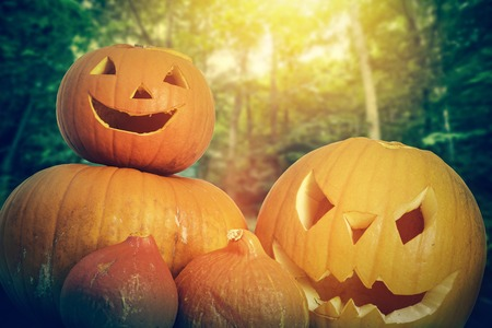Halloween pumpkins, carved jack-o-lantern on autumn forest background
