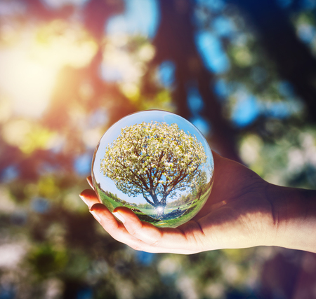 A tree and bright blue sky reflecting in a glass sphere held by a woman. Earth day. Square image.