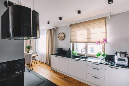 Modern kitchen interior design. Wooden floor and quartzite tabletop Stockfoto