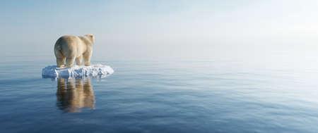 Polar bear on ice floe. Melting iceberg and global warming. Climate change
