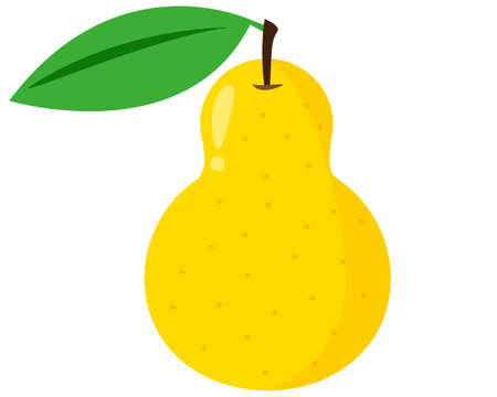 Pear vector illustration, fruit, sweet