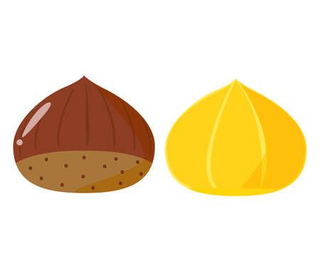 Chestnut vector illustration, autumn taste