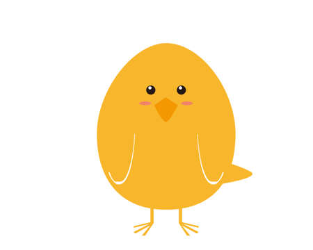 Vector illustration of Chicken chicks . 免版税图像 - 151412430