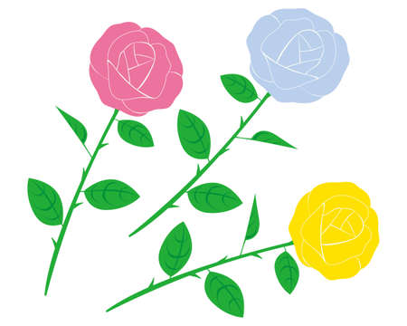 Vector illustration of a rose.