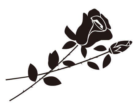 Vector illustration of a rose. Rose silhouette