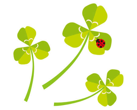 Vector illustration of a ladybug perching on a clover