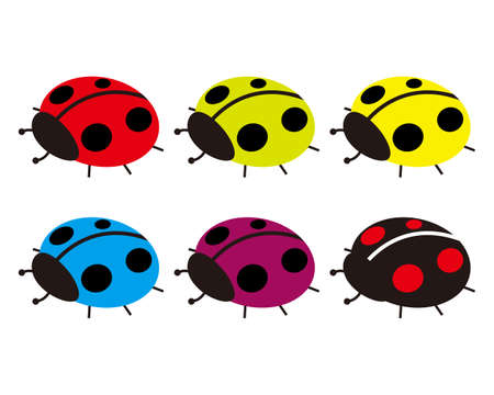 Vector illustration of colorful ladybugs .
