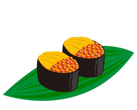 Vector illustration of salmon roe and sea urchin nigiri sushi.