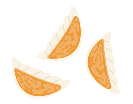 Vector illustration of grilled dumplings. Gyoza.