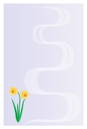 Postcard background illustration. Narcissus flower.