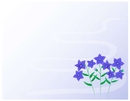 Vector illustration of bellflower flowers. Blooming flowers. Ilustração
