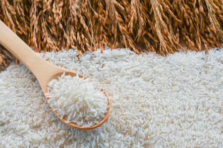 jasmine rice, Rice in a spoon, basmati rice, rice is on  wooden floor as background.