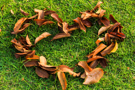 A pile of leaves the shape of a heart Stock Photo
