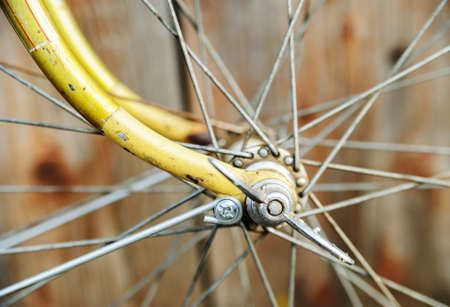 Bicycle wheel hub. A hub with spokes fixed to the brackets with nuts butterflies.