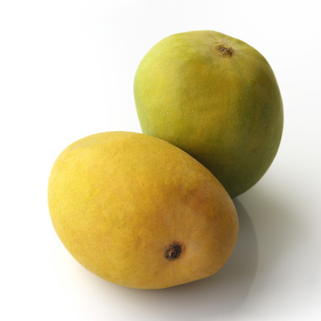 konkan: Alphonso Mangoes on White Background