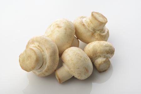 button mushrooms: Button Mushrooms