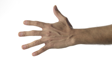unknown age: High resolution image of  human hand on white background. This image can be used in vertical  orientation too.