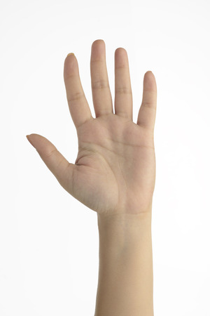 unknown age: Human Palm - Female