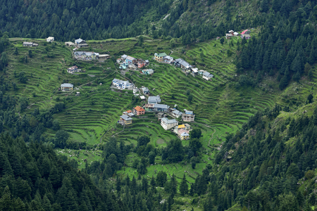 terracing: Ariel View of Small Himalayan Town midst Cedar and Pine Trees Stock Photo
