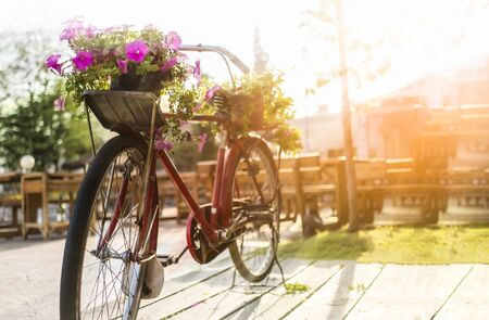 Retro bicycle decoration with flowers in the park with sunrays background Stock Photo