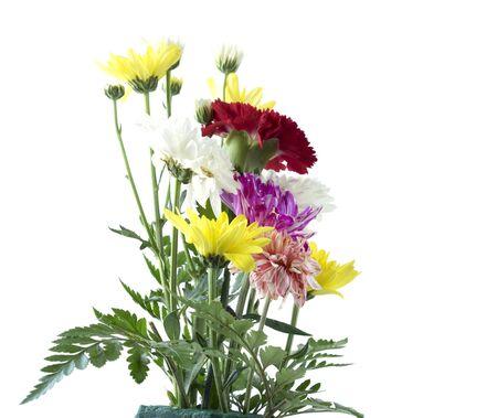 Ornamental flowering in vase , Isolated on white Background