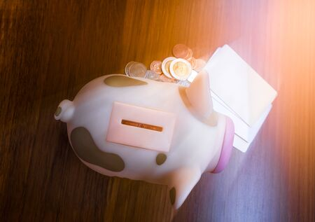 Top view of Pink piggy bank with coins Stock Photo